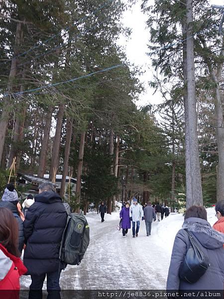 0201北海道神宮 (16).JPG