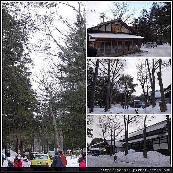 0201北海道神宮 (18).JPG