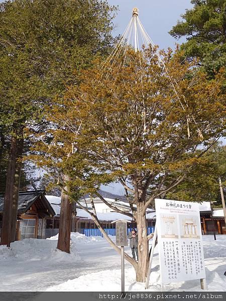 0201北海道神宮 (37).JPG
