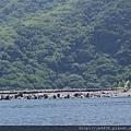 0726龜山島賞鯨一日遊 023.JPG