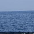 0726龜山島賞鯨一日遊 050.JPG