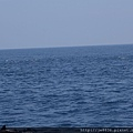 0726龜山島賞鯨一日遊 062.JPG