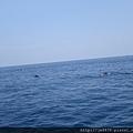 0726龜山島賞鯨一日遊 075.JPG