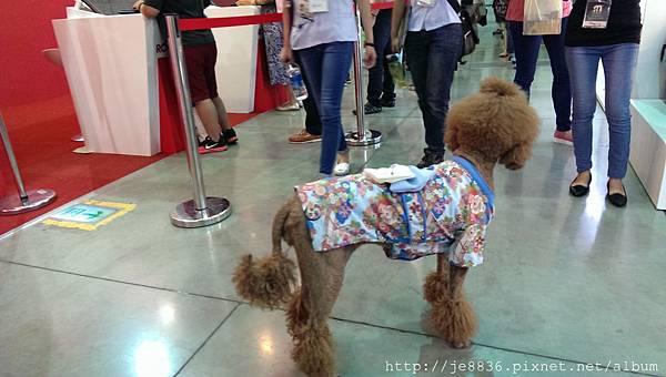 0711台北寵物展 (15).jpg