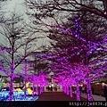 2016台灣燈會在桃園 (60).jpg