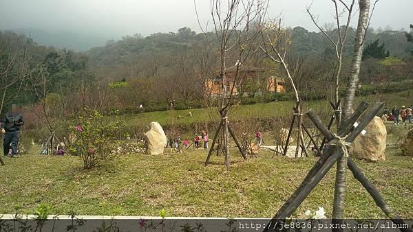 0229陽明山半日遊 (56).jpg