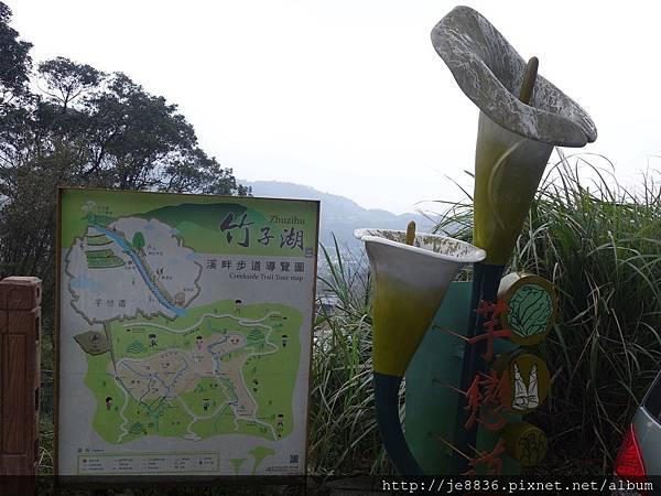 0229陽明山半日遊 (2).JPG