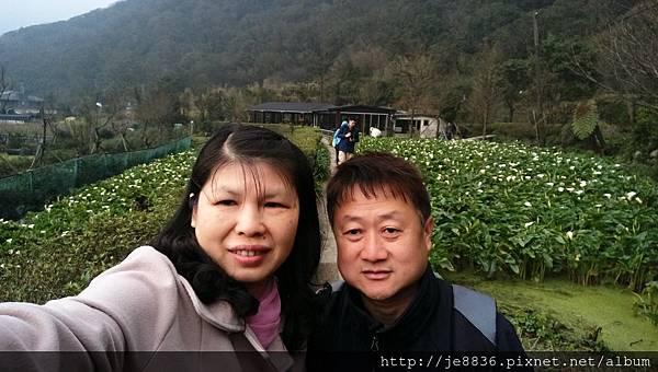 0229陽明山半日遊 (68).jpg