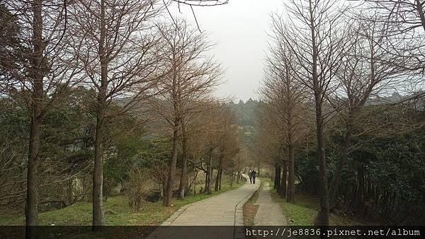 0229陽明山半日遊 (77).jpg
