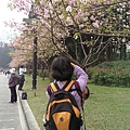 0308中正紀念堂手機版 (15).jpg