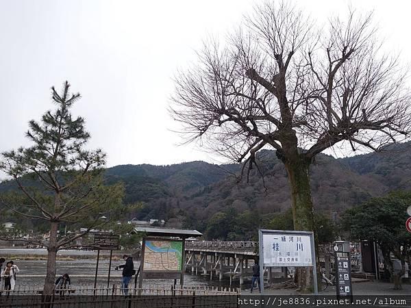 0123天龍寺庭苑 (6).JPG