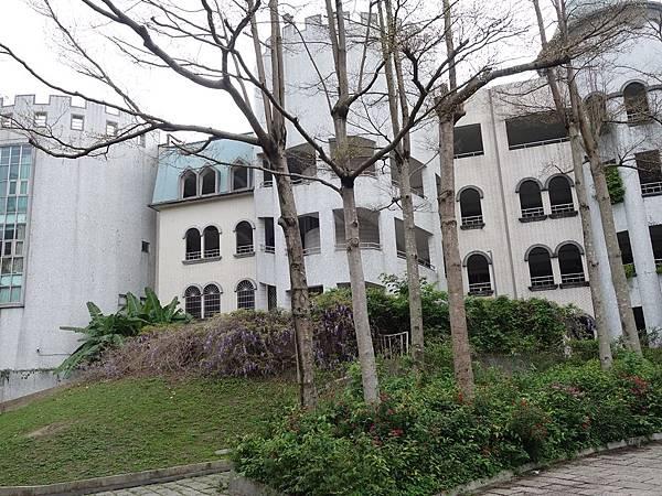 0410麗林國小紫藤季 (15).JPG