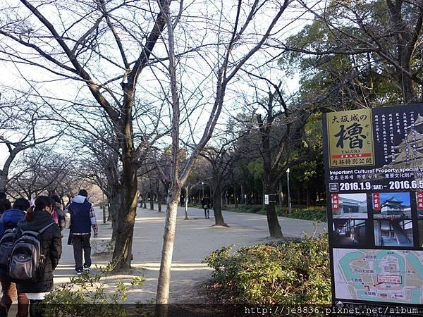 0125大阪城 (2).JPG