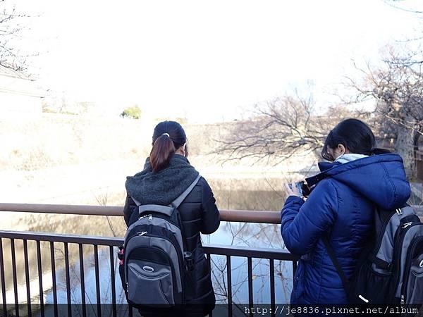 0125大阪城 (6).JPG