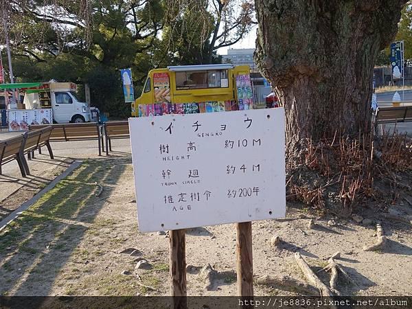 0125大阪城 (18).JPG