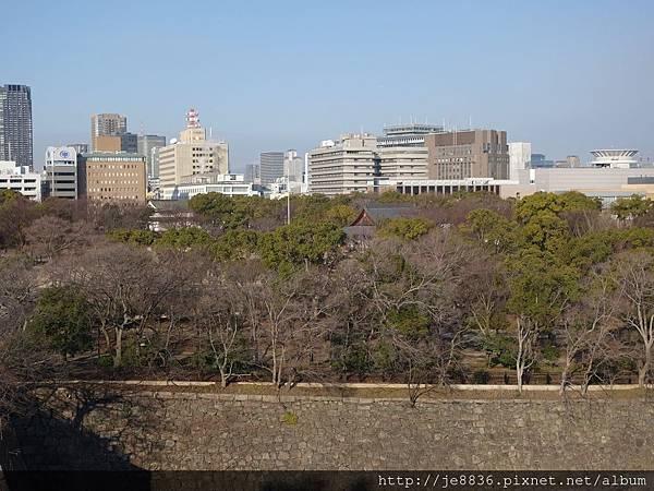 0125大阪城 (30).JPG