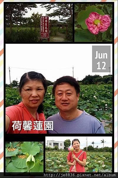 0612荷馨蓮園 (57).jpg