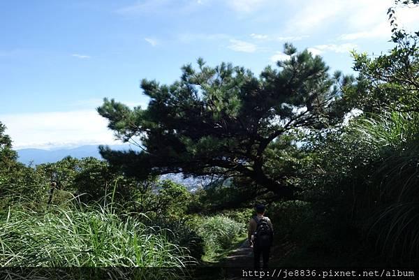 0814夢幻湖 (17).JPG