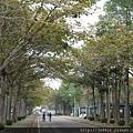 0112雲科大校園 (7).JPG