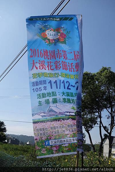 1113大溪花海節  (51).JPG