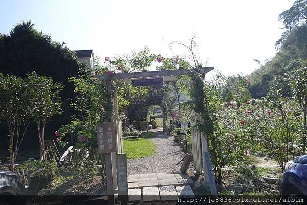 1113玫瑰山谷 (2).JPG