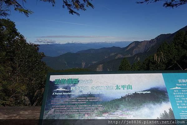 1204翠峰湖景觀道路 (6).JPG