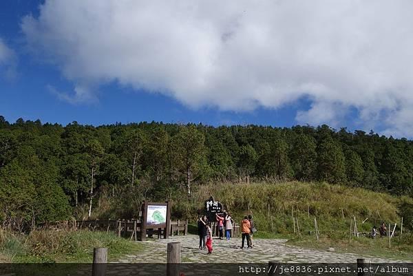 1204翠峰湖景觀道路 (18).JPG