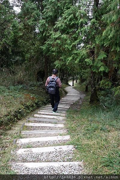 1204望洋山步道 (31).JPG