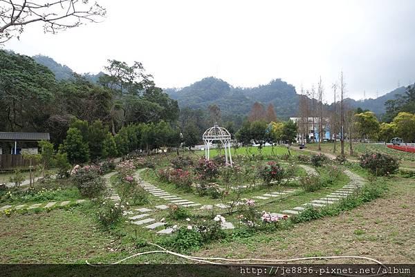 0112富田農場 (1).JPG