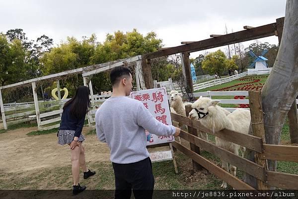 0112富田農場 (39).JPG