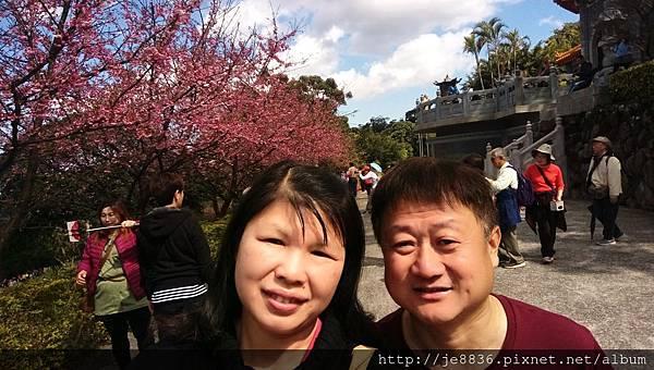 0215天元宮後山手機版 (18).jpg