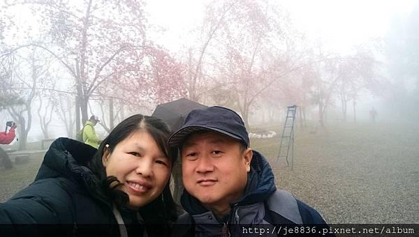 0306恩愛農場手機版 (1).jpg