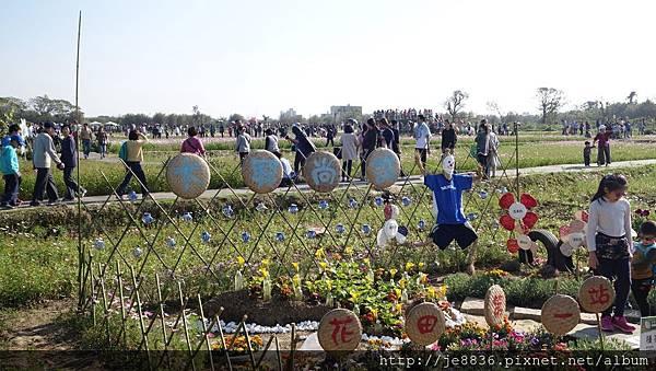 0403桃園彩色海芋節 (22).JPG