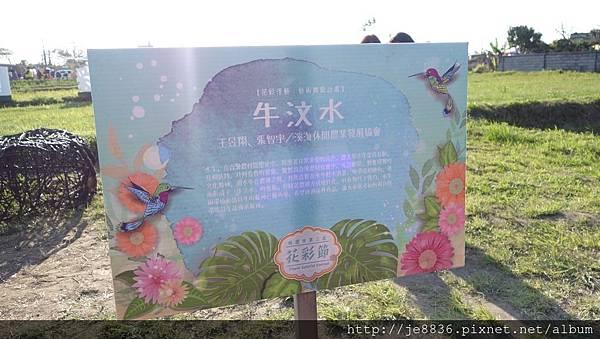 0403桃園彩色海芋節 (73).JPG