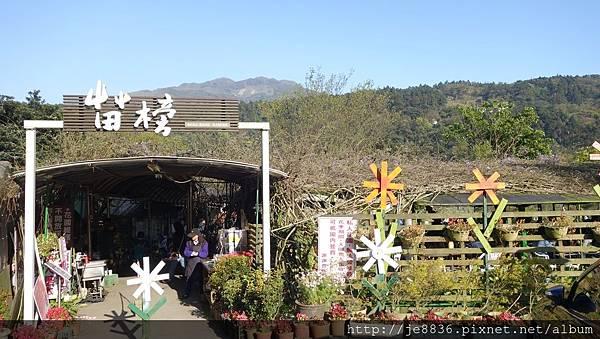 2017陽明山海芋季 (127).JPG