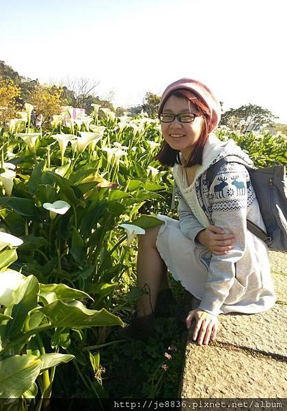 0402竹子湖手機版 (38).jpg