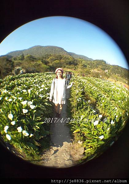 0402竹子湖手機版 (55).jpg