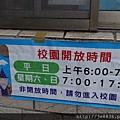 0409麗林紫藤 (12).JPG