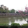 0407大湖紫藤花廊 (9).JPG
