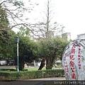 0407大湖紫藤花廊 (11).JPG
