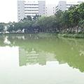 0415長庚湖隨手拍 (12).JPG