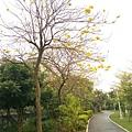 0414林口樂活公園 (13).jpg