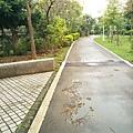 0414林口樂活公園 (14).jpg