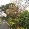 0414林口樂活公園 (15).jpg
