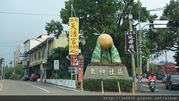 0506荷苞山桐花 (1).jpg