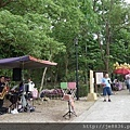 0506荷苞山桐花 (11).jpg