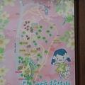0506荷苞山桐花 (14).jpg