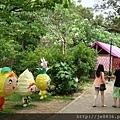 0506荷苞山桐花 (36).jpg