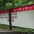 0506荷苞山桐花 (54).jpg