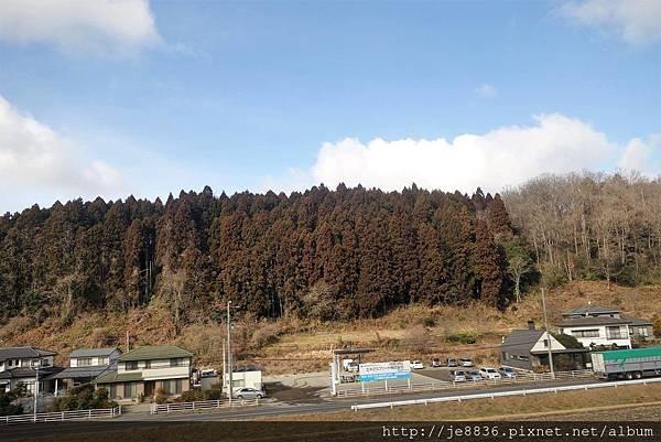 0123松島遊船1.jpg